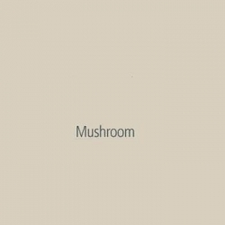 Akril Panel 6mm 2440mm X 1220mm Gloss Mushroom
