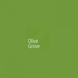 Akril Panel 6mm 2440mm X 1220mm Gloss Olive Grove